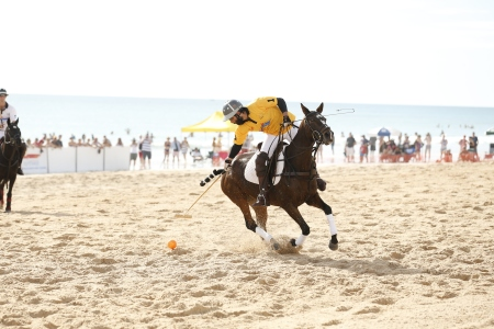 Pinctada Beach Polo 4