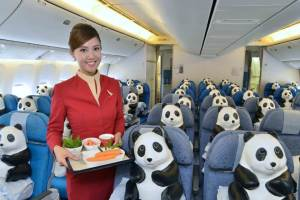 Pandas inside CX - cabin crew 1